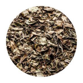 Herbata Biała Pai Mu Tan 50 g
